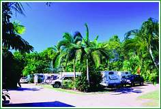 Tropical Hibiscus Caravan Park - Accommodation Port Macquarie