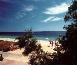 Acacia Caravan Park - Accommodation Port Macquarie