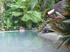 Daintree Rainforest Retreat Motel