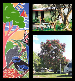 Bushland Cabins - Accommodation Port Macquarie