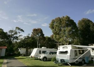 Big4 Anglesea Holiday Park - Accommodation Port Macquarie