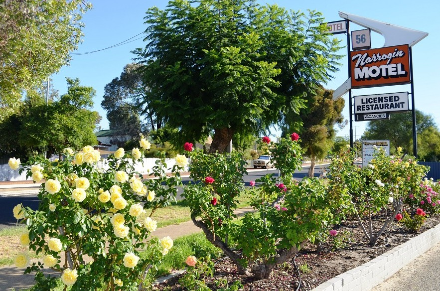 Narrogin Motel - Accommodation Port Macquarie