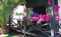 Desert Palms Resort - Accommodation Port Macquarie