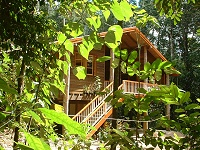 Rivers Edge Rainforest Retreat - Accommodation Port Macquarie