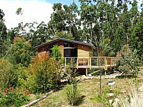 Southern Forest Accommodation - Accommodation Port Macquarie