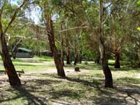 Woods Reserve - Accommodation Port Macquarie