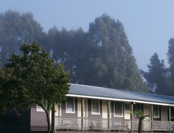 Bondi Forest Lodge - Accommodation Port Macquarie