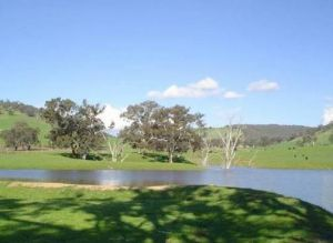 Hillview Farmstay - Accommodation Port Macquarie