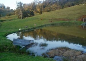 Barkeldine Farm Country Retreat - Accommodation Port Macquarie