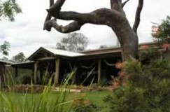 The Hollow Log Country Retreat - Accommodation Port Macquarie
