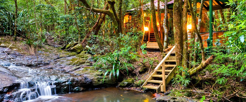 The Mouses House - Rainforest Retreat - Accommodation Port Macquarie