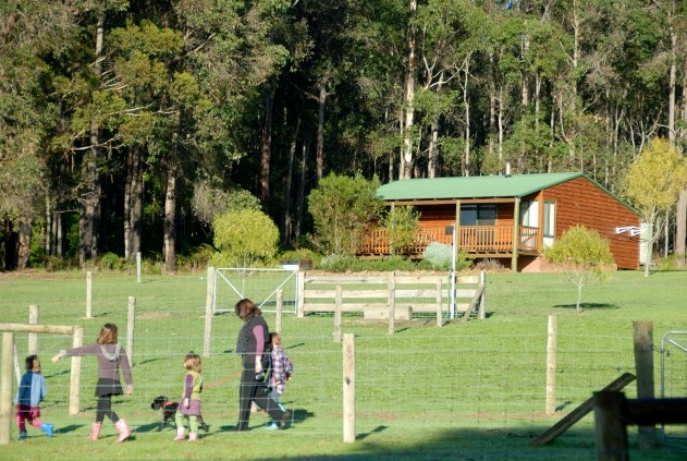 Diamond Forest Farm Stay - Accommodation Port Macquarie