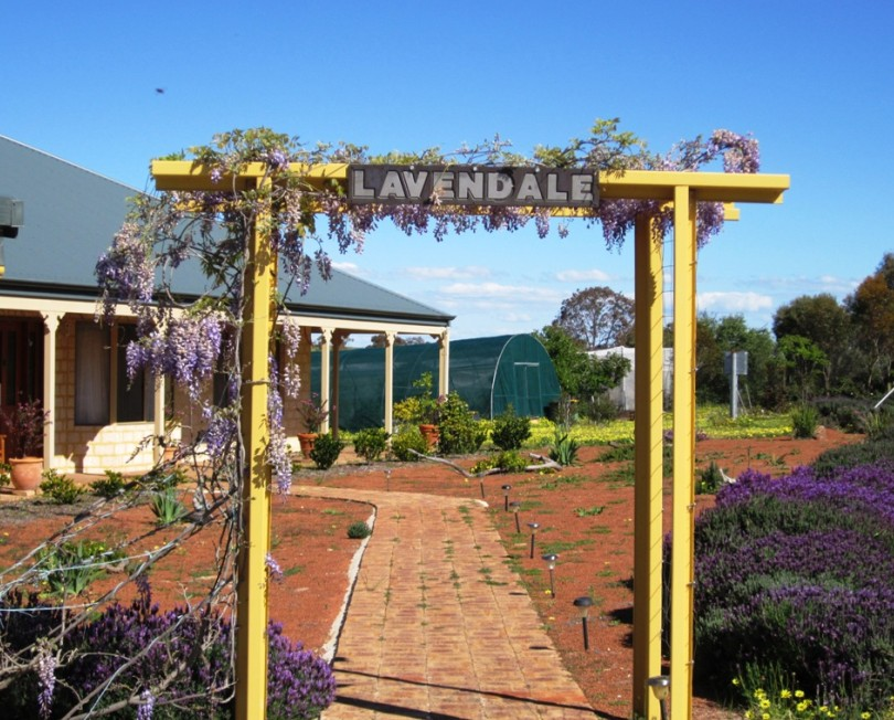 Lavendale Farmstay and Cottages - Accommodation Port Macquarie