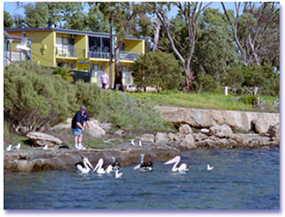 Almonta Holiday Apartments - Accommodation Port Macquarie