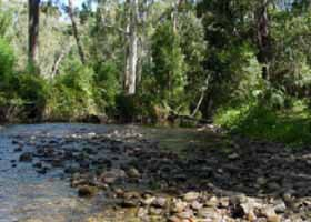 River Rest Country Cottage - Accommodation Port Macquarie