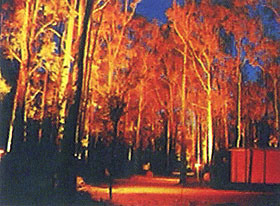 Dwellingup Chalet amp Caravan Park - Accommodation Port Macquarie