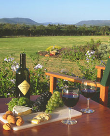 Tranquil Vale Vineyard Cottages - Accommodation Port Macquarie