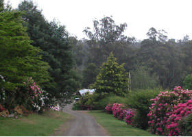 Mountain Rivers Lodge - Accommodation Port Macquarie