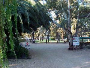 Kingston-On-Murray Caravan Park - Accommodation Port Macquarie