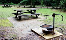 Bellbird campground - Accommodation Port Macquarie