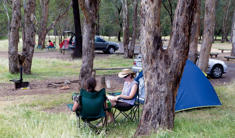 Camp Blackman - Accommodation Port Macquarie