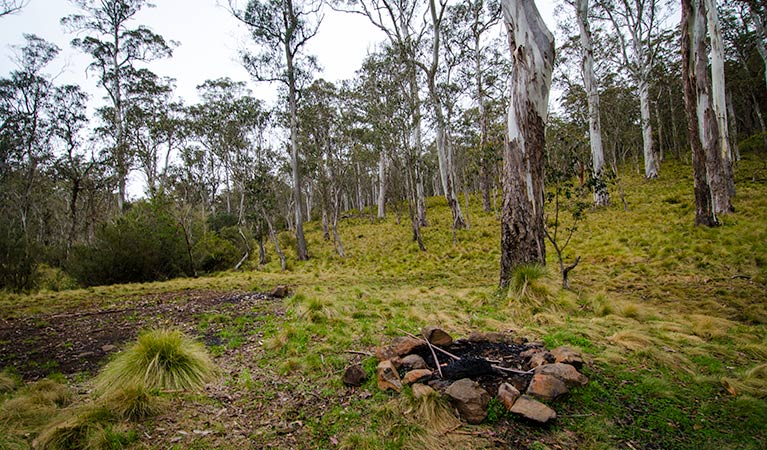 Gummi Falls campground - Accommodation Port Macquarie