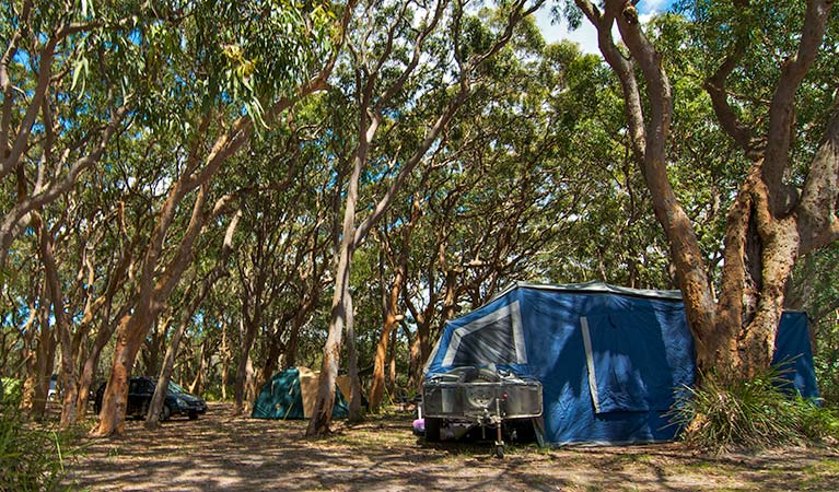 Stewart and Lloyds campground - Accommodation Port Macquarie