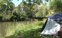 Williams River Holiday Park - Accommodation Port Macquarie
