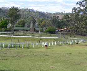 Kellarni Downs Farmstay-Scenic Rim - Accommodation Port Macquarie