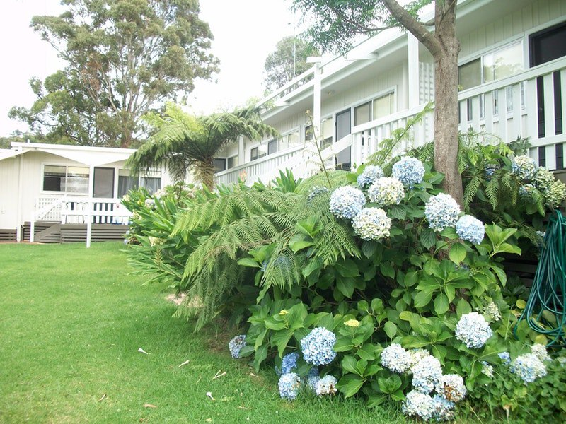 Top of the Lake Holiday Units - Accommodation Port Macquarie
