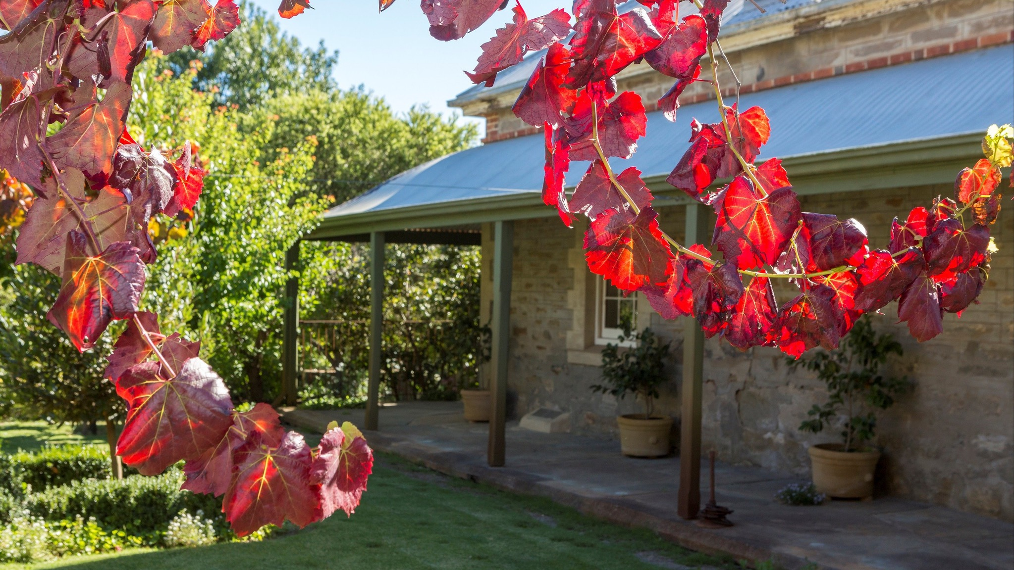 Grand Cru Estate Homestead - Accommodation Port Macquarie