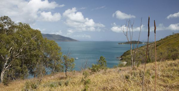 Molle Island National Park Whitsundays National Park Camping Ground - Accommodation Port Macquarie