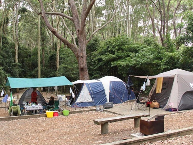 Pebbly Beach campground - Yuraygir National Park