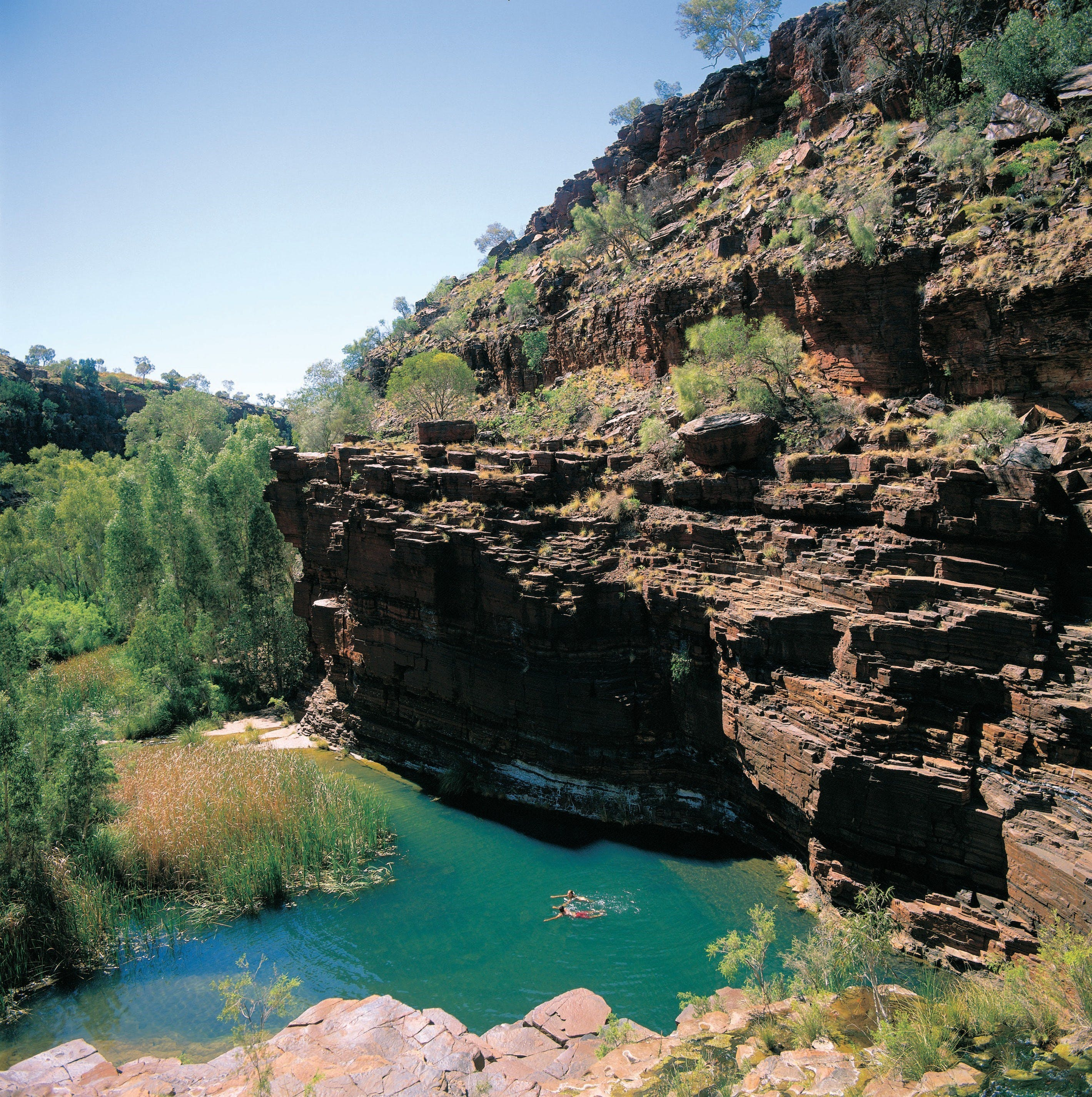 Dales Gorge Camp at Karijini National Park - Accommodation Port Macquarie
