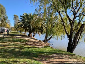 Robinvale Riverside Caravan Park - Accommodation Port Macquarie