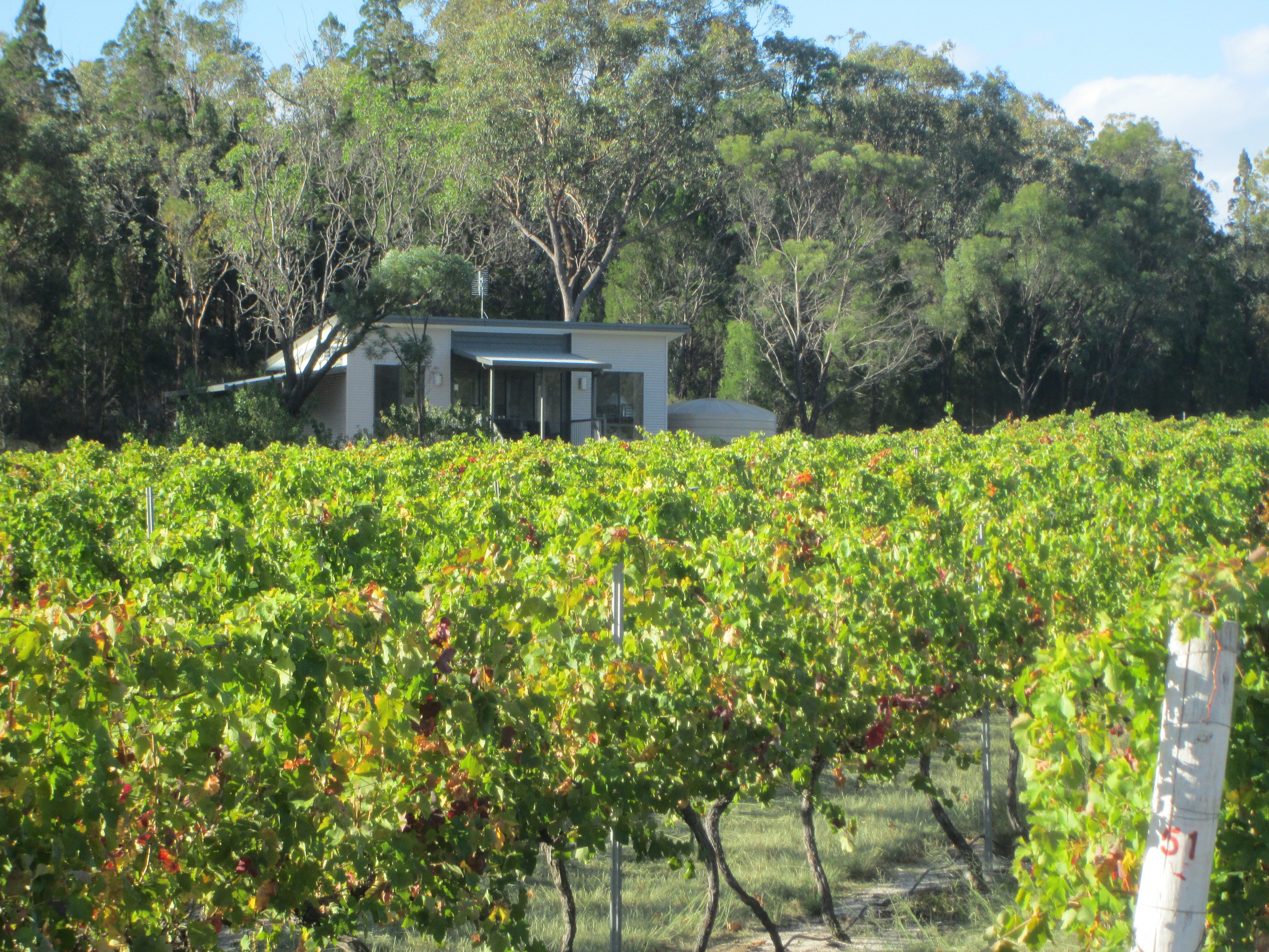 Just Red Wines Vineyard Cabins - Accommodation Port Macquarie