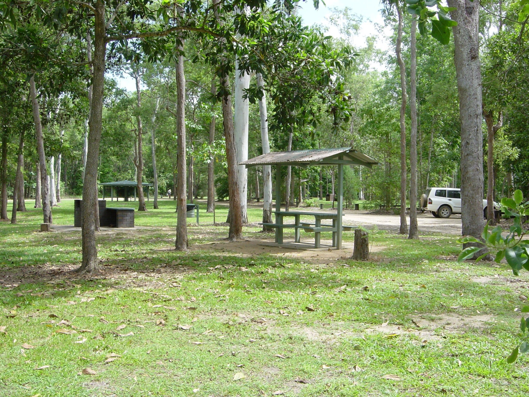 Broadwater camping area Abergowrie State Forest - Accommodation Port Macquarie