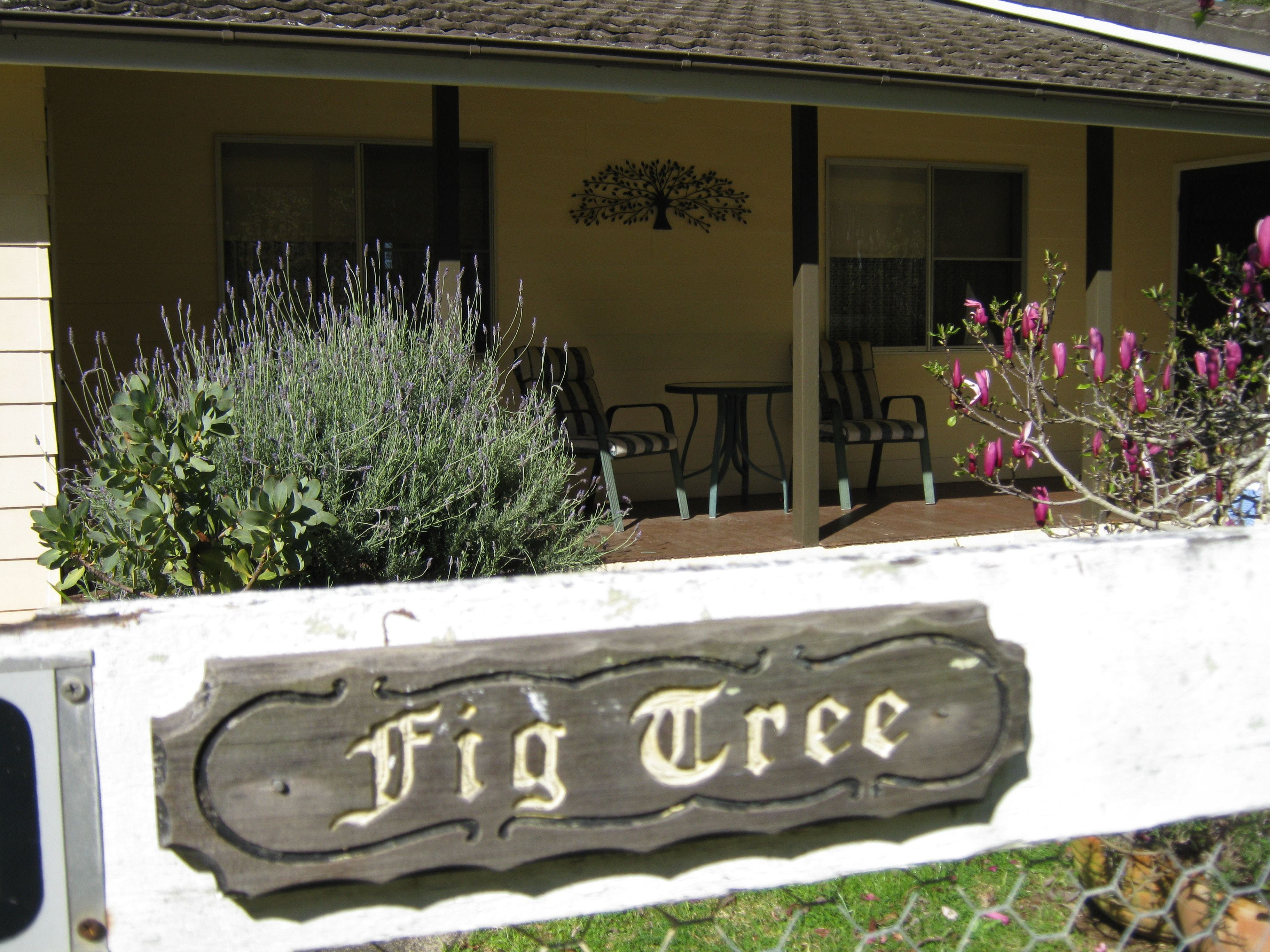 Figtree Cottage - Accommodation Port Macquarie