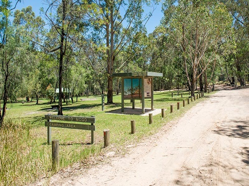 Mogo campground - Accommodation Port Macquarie