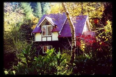 Forest Glade Olinda - Accommodation Port Macquarie