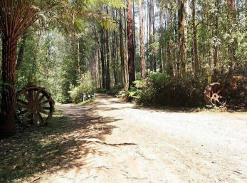 Hill n Dale Farm Cottages - Accommodation Port Macquarie
