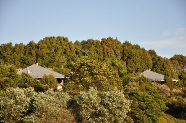 Tallaringa Views - Accommodation Port Macquarie