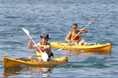 Manly Kayaks - Accommodation Port Macquarie