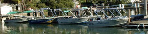 Brooklyn Central Boat Hire & General Store - Accommodation Port Macquarie