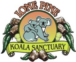 Lone Pine Koala Sanctuary - Accommodation Port Macquarie