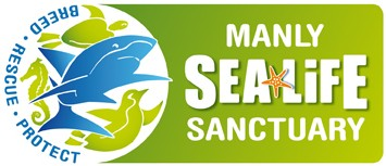 Manly SEA LIFE Sanctuary - Accommodation Port Macquarie