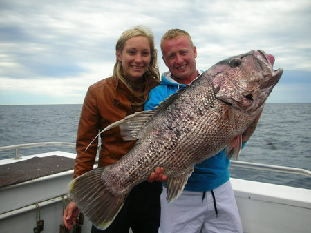 Mills Charters Fishing And Whale Watch Cruises - Accommodation Port Macquarie
