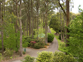 Mount Lofty Botanic Garden - Accommodation Port Macquarie