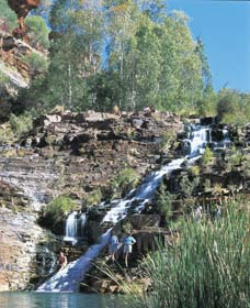 Fortescue Falls - Accommodation Port Macquarie