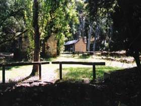 Wirrabara Forest Reserve - Accommodation Port Macquarie